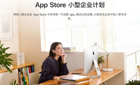 App Store 小型企业计划